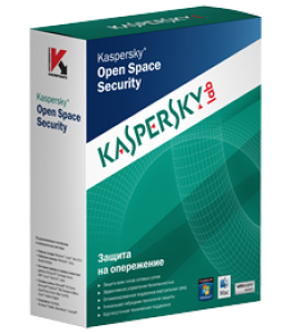 Kaspersky Work Space Security (10 раб. станций/смартф. / 1 год)